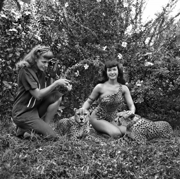 bunny-yeager-bettie-page-cheetahs